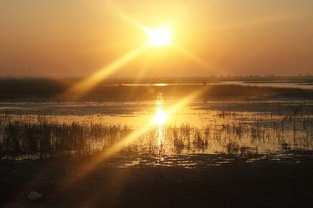 auringon nousu aamulla