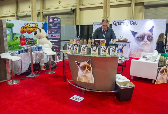 grumpy cat on maailman tuottavin kissa