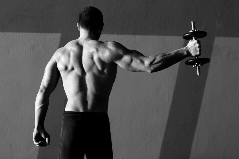 vapaat painot stimuloivat eniten lihaksia
