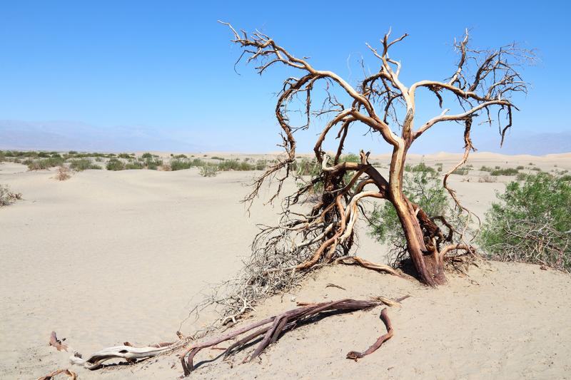 kuiva lääni, eli dry county